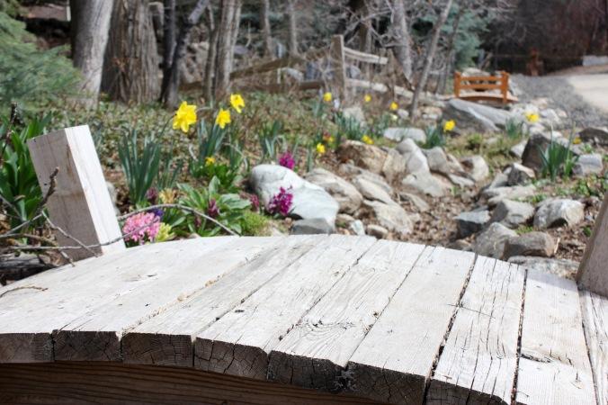 Spring Garden Prep Tips