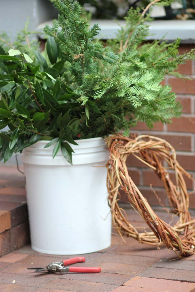 Winter Greens on DIY Grapevine Wreaths