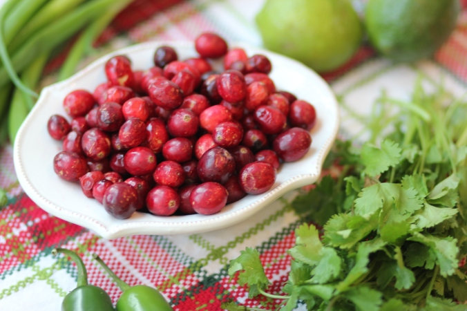 Cranberry Salsa Dip {GF}